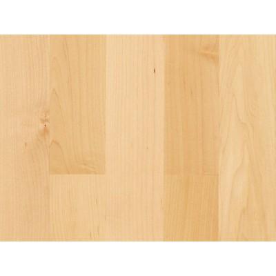 Parador Basic 11-5 - JAVOR KANADSKÝ NATURAL - třívrstvá dřevěná podlaha plovoucí